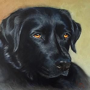 schilderij hond huisdier