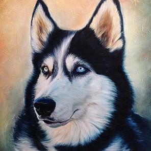 schilderij huisdier husky