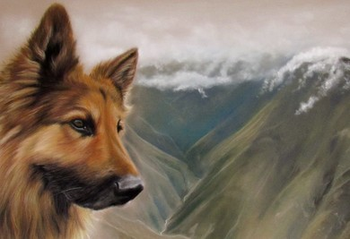 pasteltekening hond